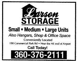Larson Storage logo